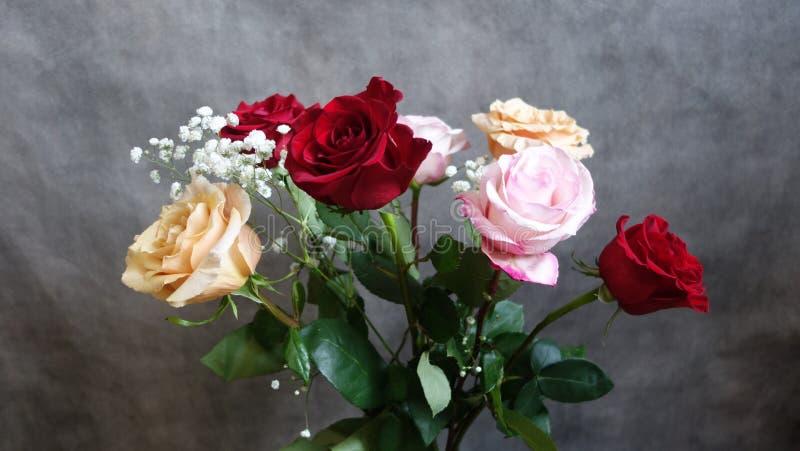 Ramo de rosas rojas, de las rosas y blancas Enhorabuena imagen de archivo