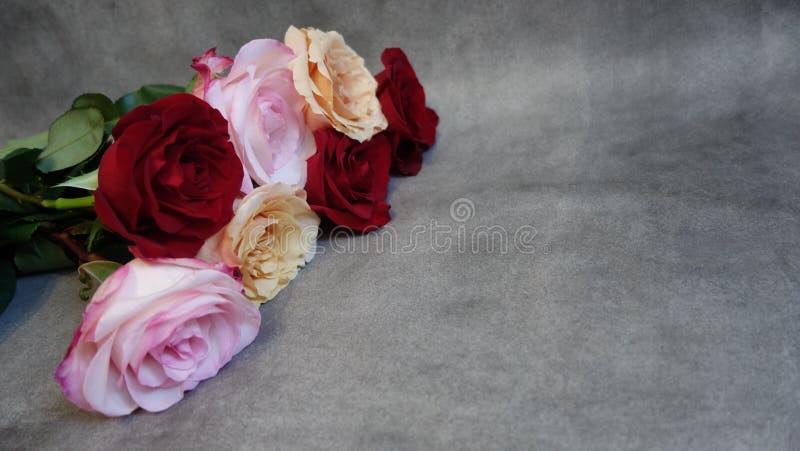 Ramo de rosas rojas, de las rosas y blancas Enhorabuena foto de archivo