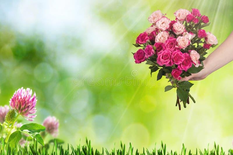 Ramo de rosas rosadas con las pequeñas flores y hojas del verde Primavera, día de fiesta fotos de archivo libres de regalías