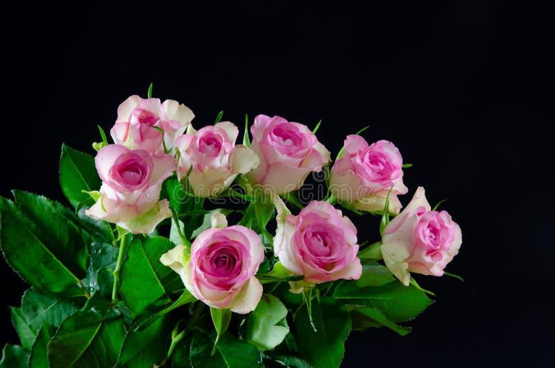 Ramo de rosas rosadas en el fondo negro foto de archivo libre de regalías