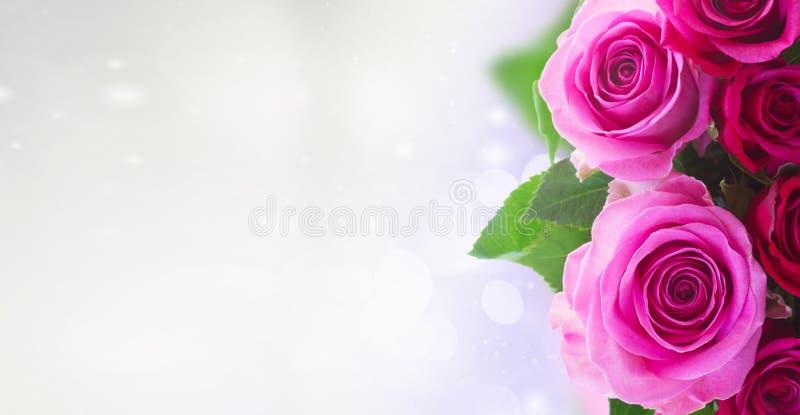 Ramo de rosas rosadas frescas foto de archivo