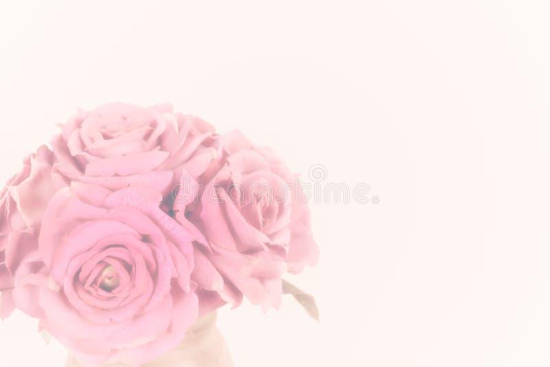 Ramo de rosas rosadas suaves en el fondo blanco foto de archivo