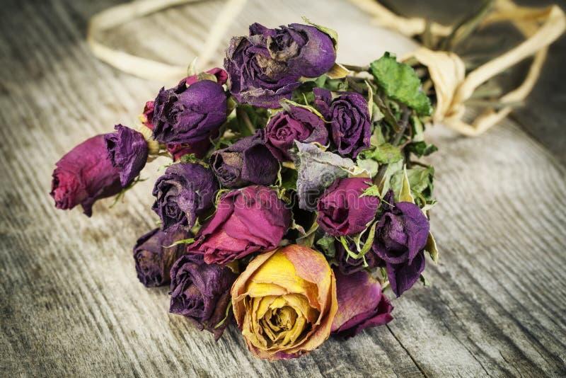 Ramo de rosas secadas foto de archivo libre de regalías