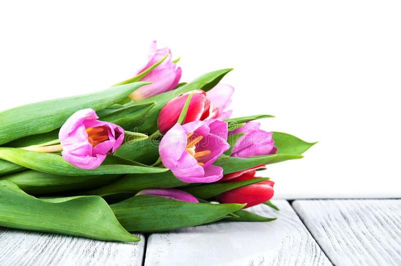 Ramo de tulipanes imagen de archivo