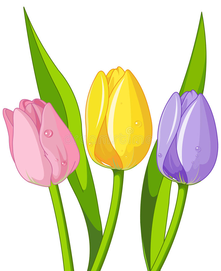 Ramo de tulipanes stock de ilustración