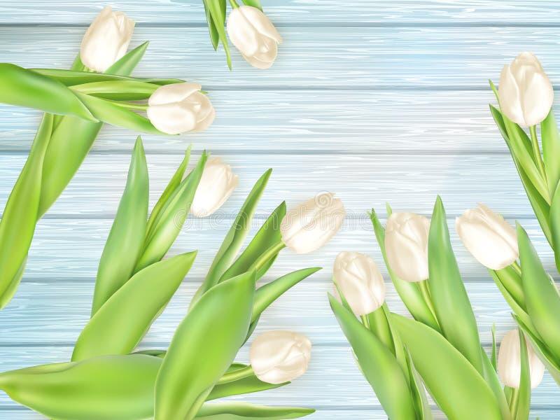 Ramo de tulipanes blancos EPS 10 libre illustration