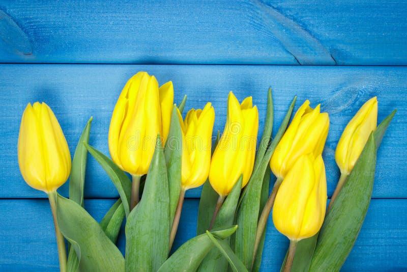 Ramo de tulipanes frescos en fondo de madera azul fotografía de archivo