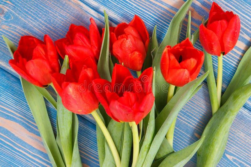 Ramo de tulipanes frescos en tableros azules, decoración de la primavera fotografía de archivo