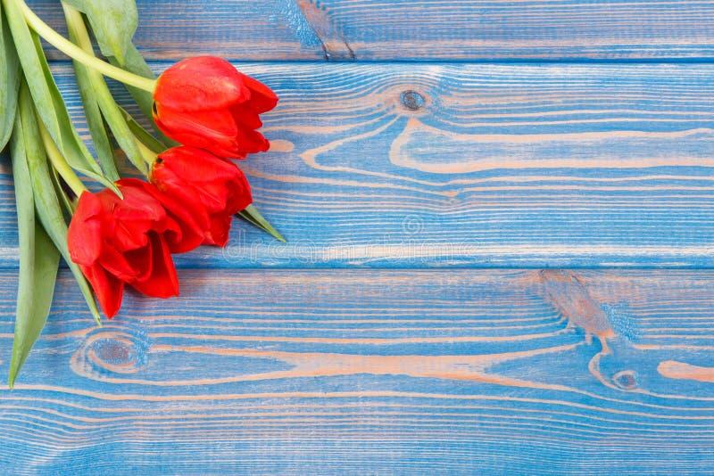 Ramo de tulipanes frescos en tableros azules, espacio de la copia para el texto foto de archivo
