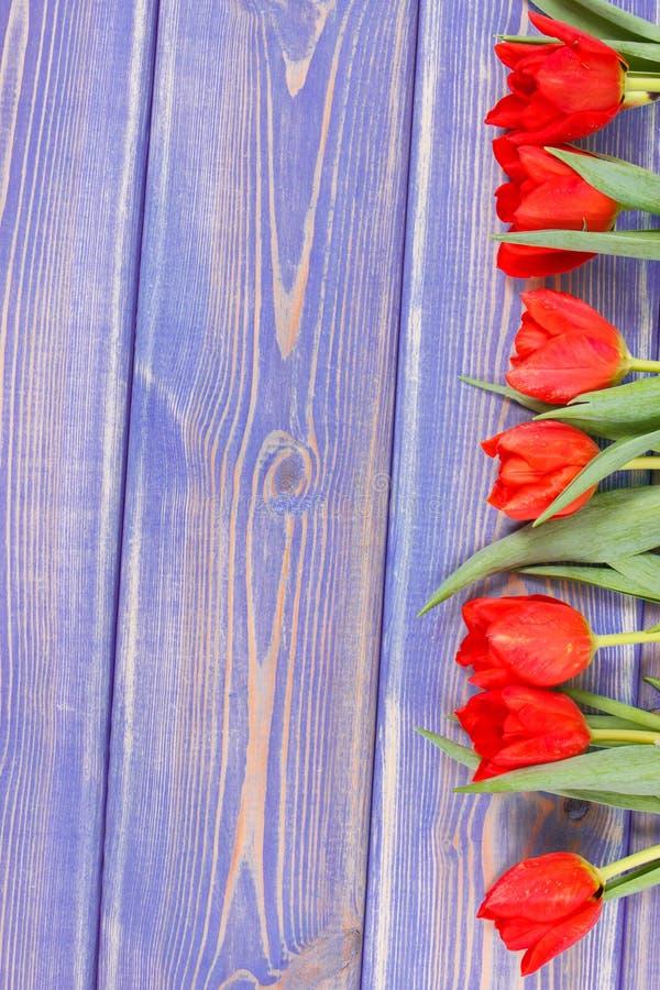Ramo de tulipanes frescos en tableros púrpuras, espacio de la copia para el texto foto de archivo