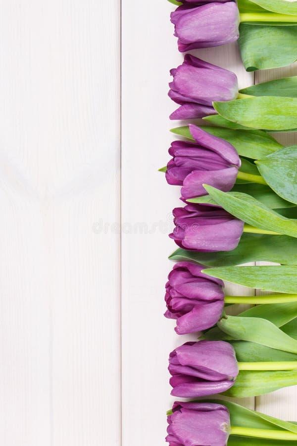 Ramo de tulipanes púrpuras para diversas ocasiones en tableros, espacio de la copia para el texto fotos de archivo libres de regalías