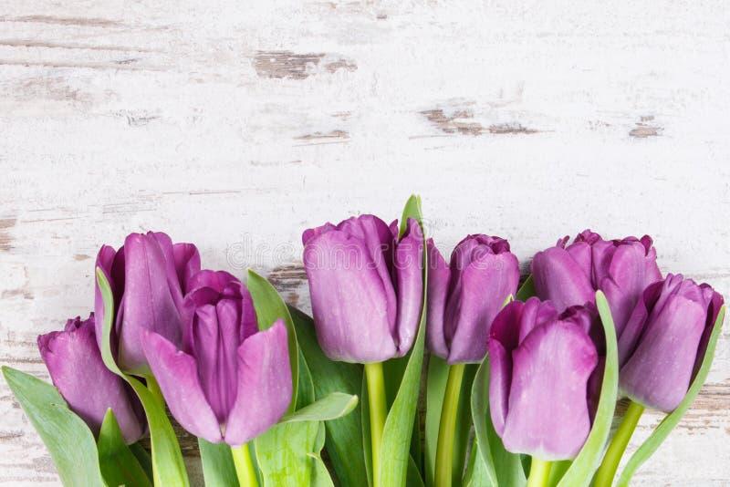 Ramo de tulipanes p?rpuras para diversas ocasiones en tableros r?sticos, espacio de la copia para el texto fotografía de archivo libre de regalías