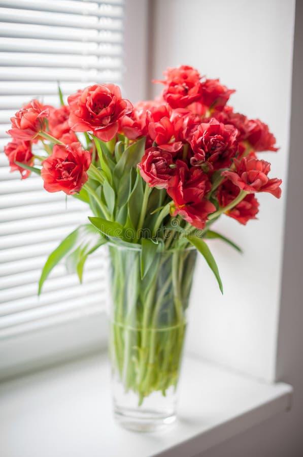 Ramo de tulipanes rojos en un florero de cristal en la ventana fotografía de archivo