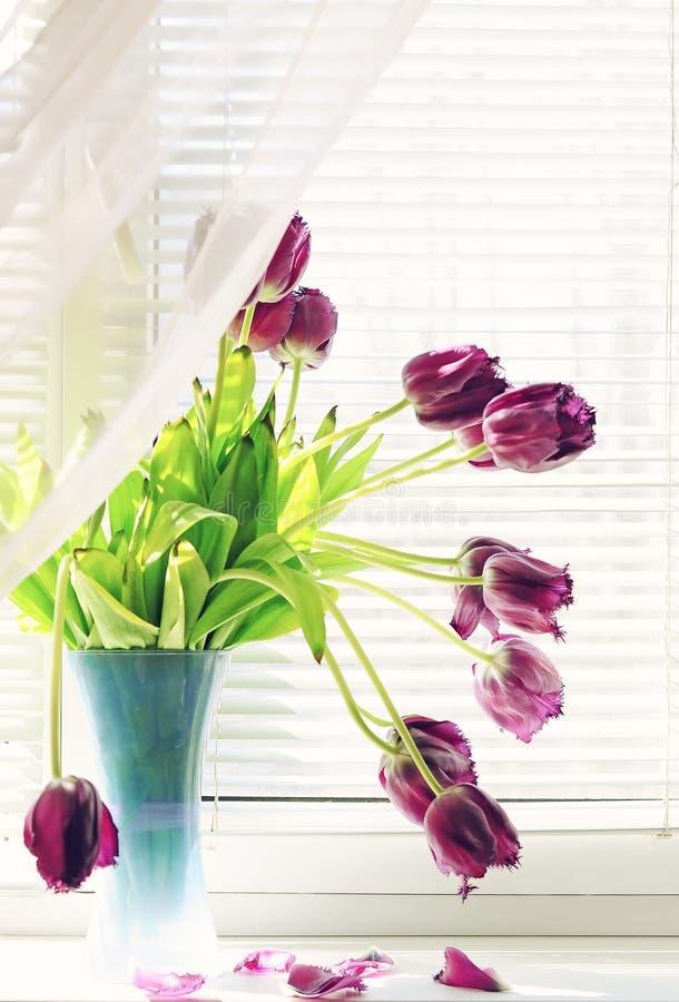 Ramo de tulipanes rojos en una ventana brillante que se descolora con los pétalos regados Estilo de la vendimia imagen de archivo