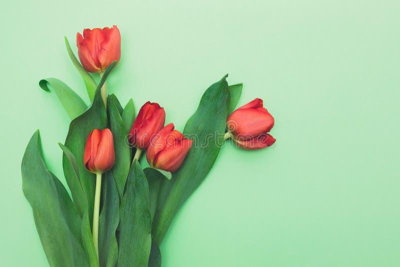Ramo de tulipanes rojos frescos en fondo verde claro foto de archivo libre de regalías