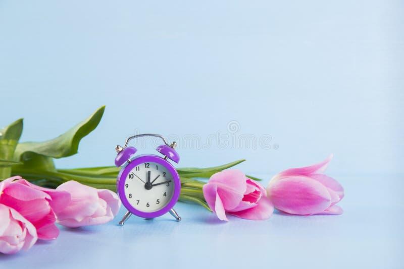 Ramo de tulipanes rosados blandos con el reloj púrpura en b de madera azul imagen de archivo libre de regalías