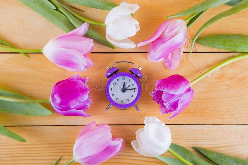 Ramo de tulipanes rosados blandos con el reloj púrpura en de madera ligero fotos de archivo libres de regalías