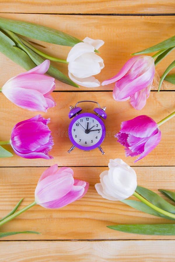 Ramo de tulipanes rosados blandos con el reloj púrpura en de madera ligero fotografía de archivo