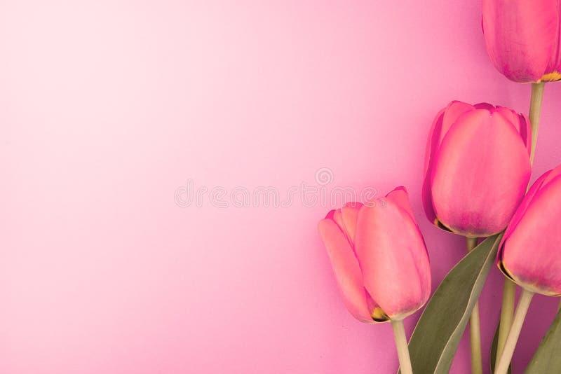 Ramo de tulipanes rosados con el espacio para el mensaje de saludo imagen de archivo