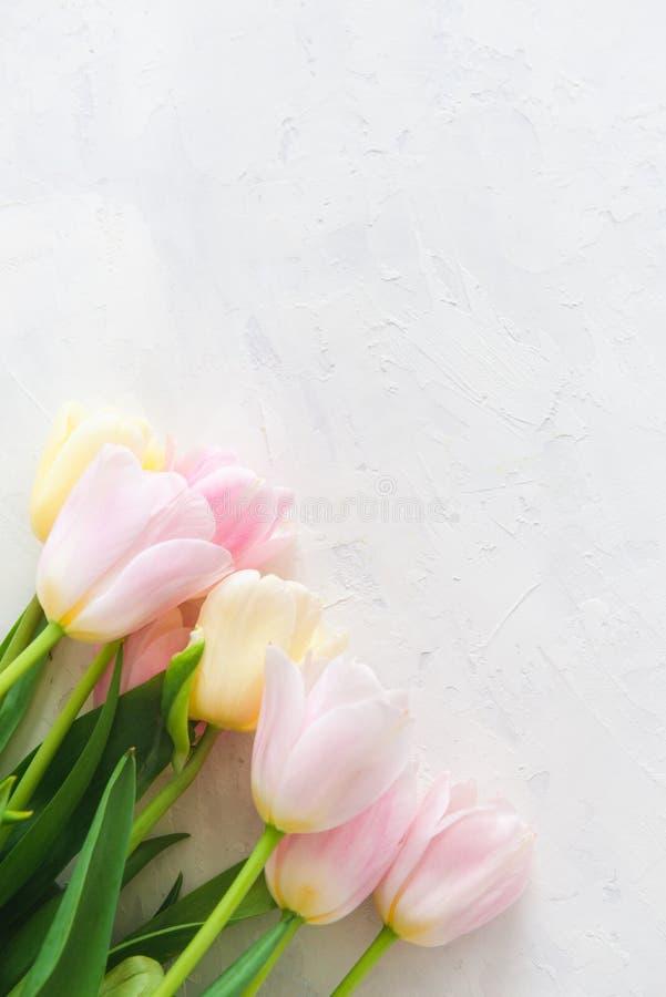 Ramo de tulipanes rosados en el fondo blanco Visión superior, espacio de la copia, cierre para arriba Tarjeta del resorte imagen de archivo libre de regalías