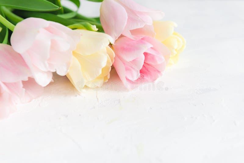 Ramo de tulipanes rosados en el fondo blanco Vista lateral, espacio de la copia, cierre para arriba Tarjeta del resorte fotografía de archivo