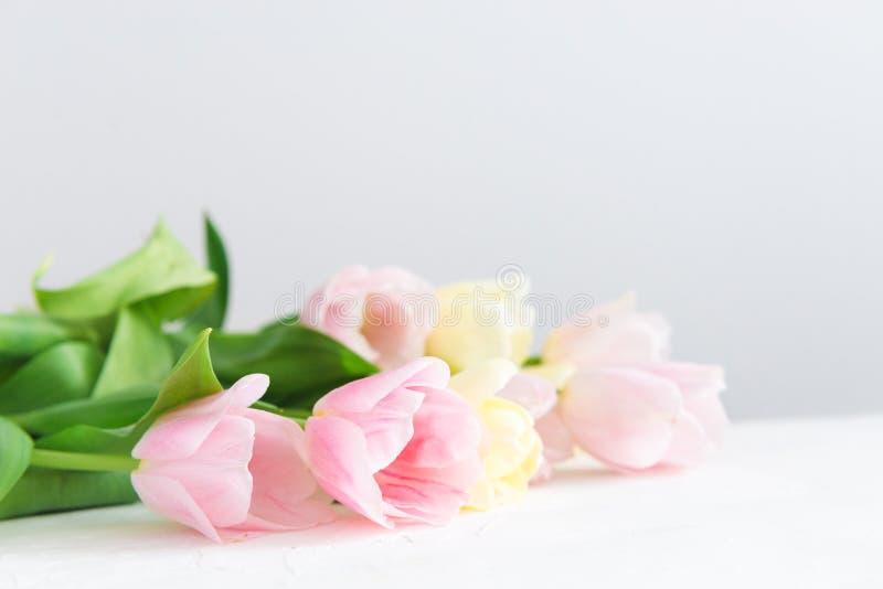 Ramo de tulipanes rosados en el fondo blanco Vista lateral, espacio de la copia, cierre para arriba Tarjeta del resorte fotografía de archivo libre de regalías