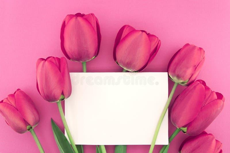 Ramo de tulipanes rosados en fondo rosado con la tarjeta vacía imágenes de archivo libres de regalías