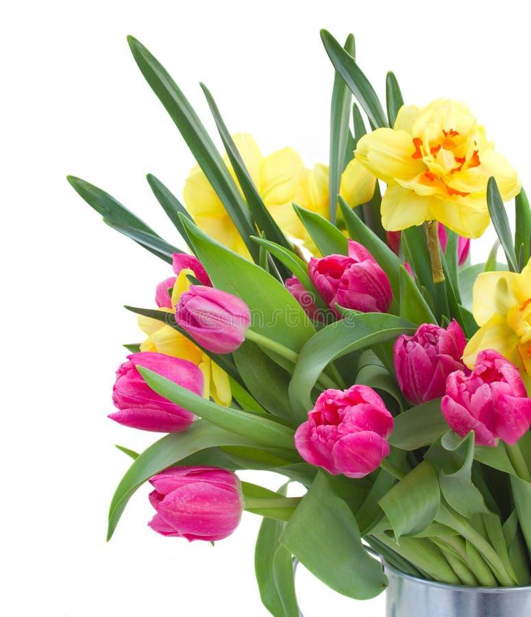 Ramo de tulipanes rosados y de narcisos amarillos imágenes de archivo libres de regalías