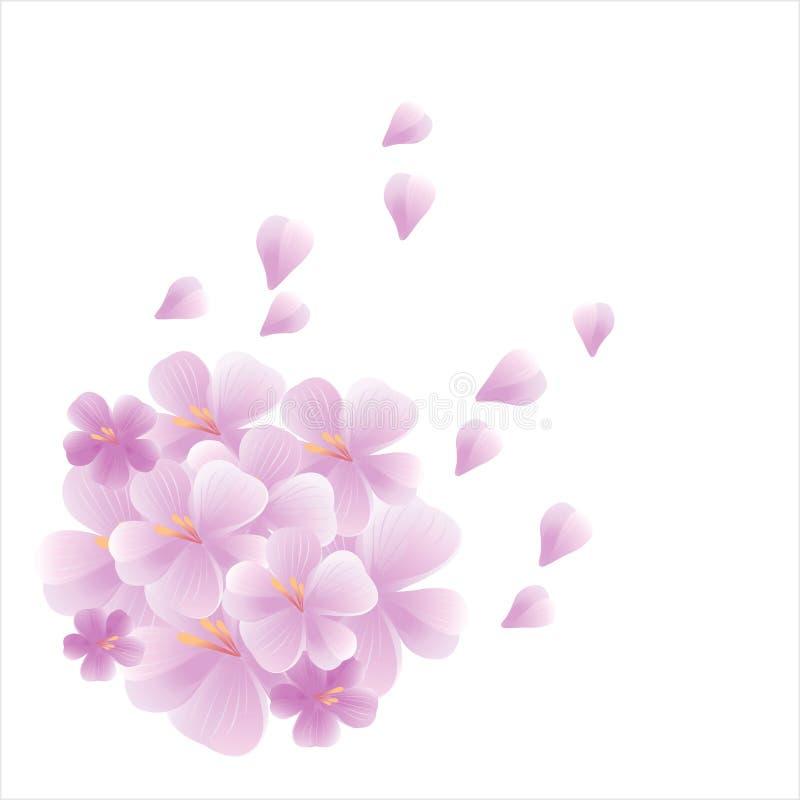 Ramo de volar violeta purpúreo claro de las flores y de los pétalos aislado en el fondo blanco flores del Apple-árbol Cherry Blos libre illustration