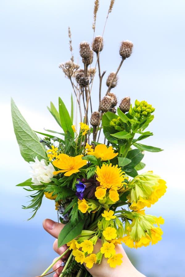 Ramo de wildflowers de la primavera en una mano contra un fondo del cielo azul fotos de archivo