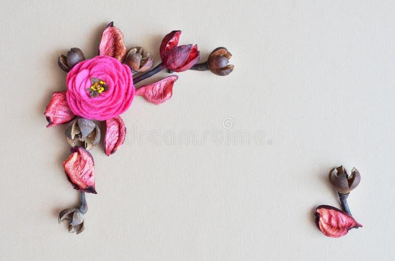 Ramo dei fiori asciutti su fondo grigio immagine stock