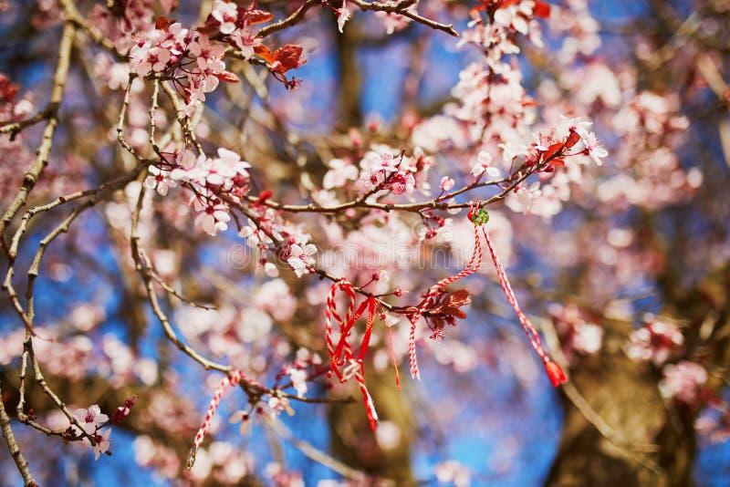 Ramo del ciliegio sbocciante con il martisor rosso e bianco immagine stock libera da diritti