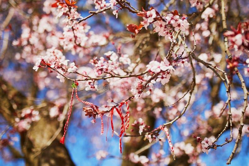 Ramo del ciliegio sbocciante con il martisor rosso e bianco immagini stock libere da diritti