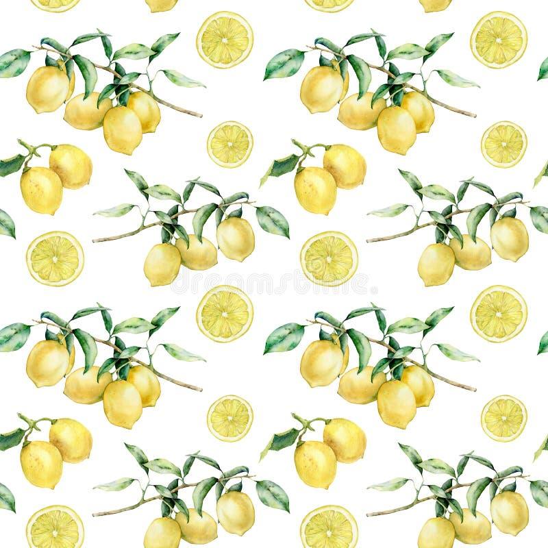 Ramo del limone dell'acquerello e modello senza cuciture della fetta Frutta dipinta a mano del limone sul ramo con le foglie e le immagine stock
