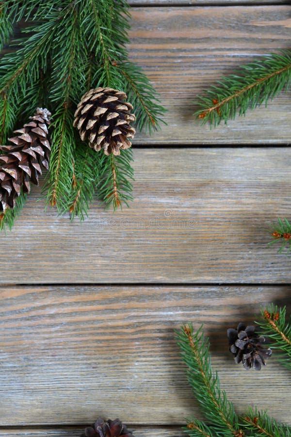 Ramo del pino di Natale con i coni sui bordi fotografia stock