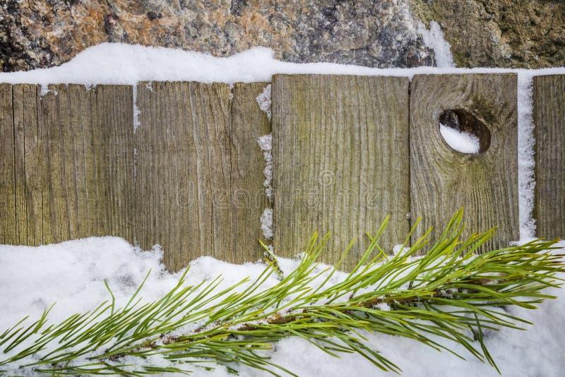 Ramo del pino nella neve su un fondo di legno fotografia stock