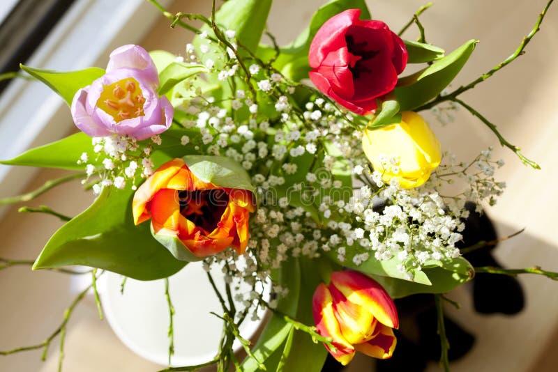 Ramo del resorte con los tulipanes fotos de archivo