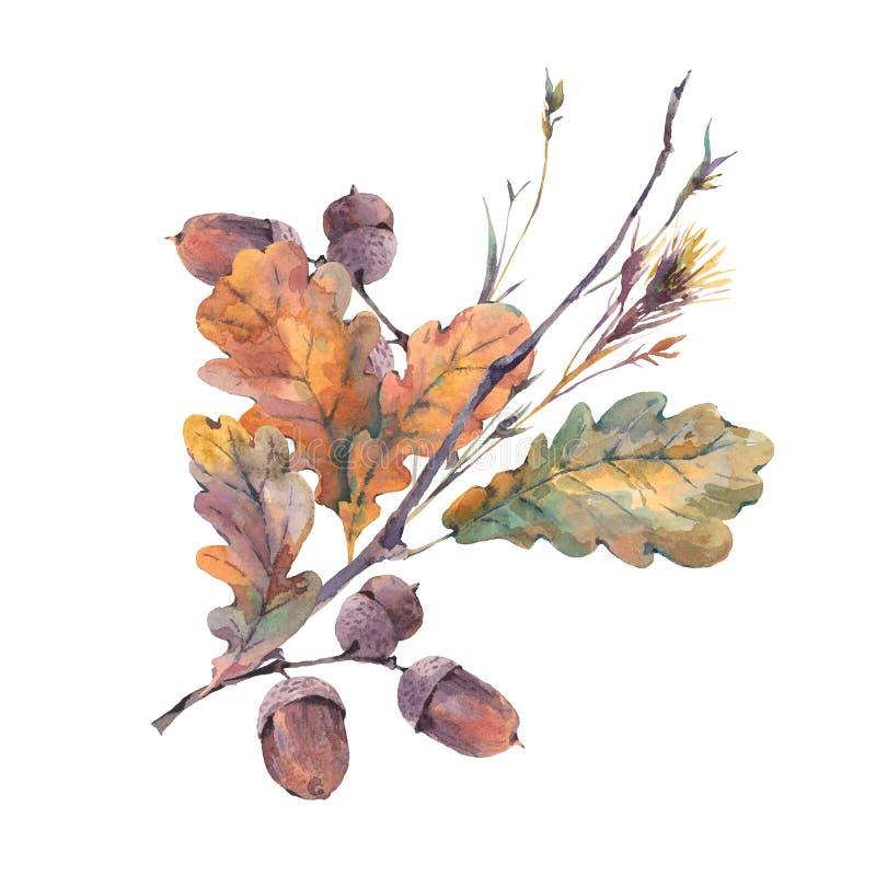 Ramo del vintage del otoño de la acuarela stock de ilustración