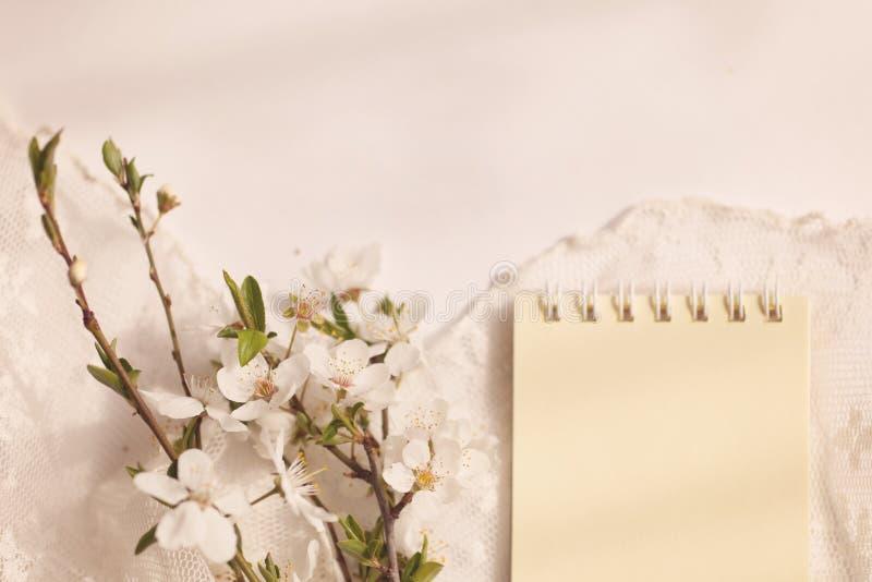 Ramo delicado de la cereza con la servilleta del cordón fotografía de archivo libre de regalías