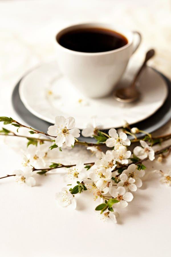 Ramo delicado de la cereza con la taza de coffe foto de archivo libre de regalías