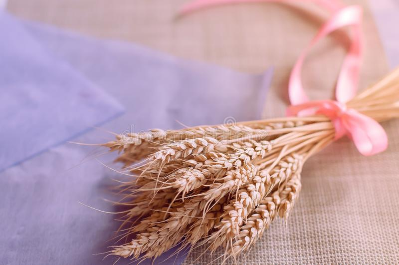 Ramo delicado hermoso con la cinta rosada de los oídos secados del trigo en la tabla fotos de archivo libres de regalías
