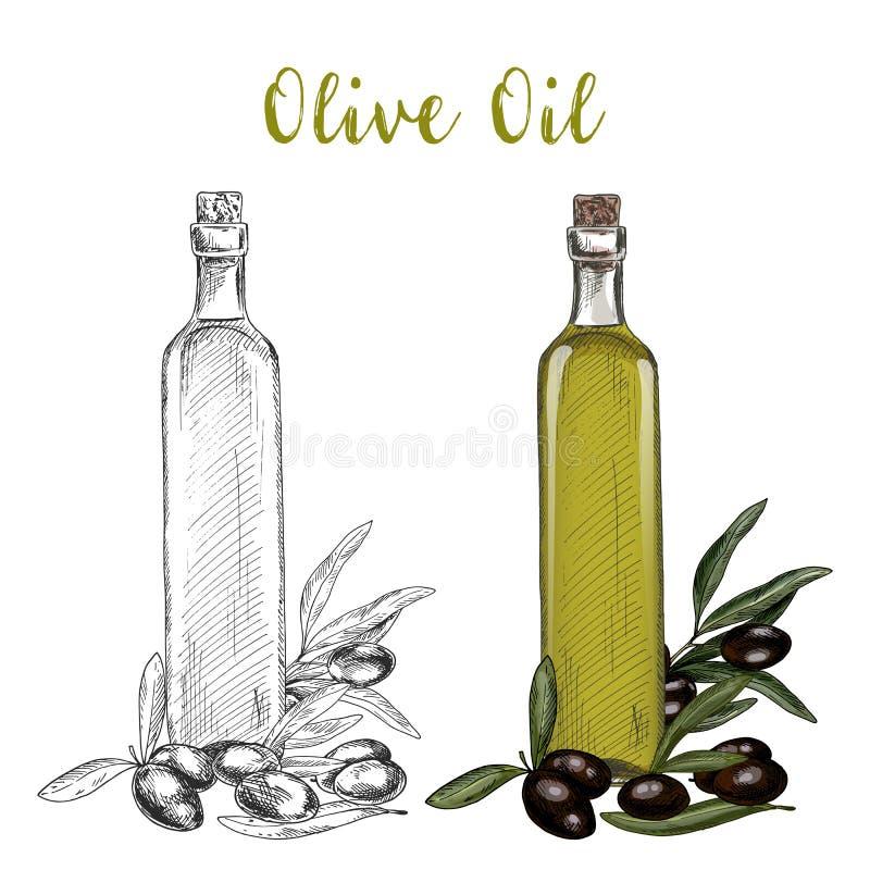 Ramo dell'olio d'oliva e bottiglia della cristalleria con sughero royalty illustrazione gratis