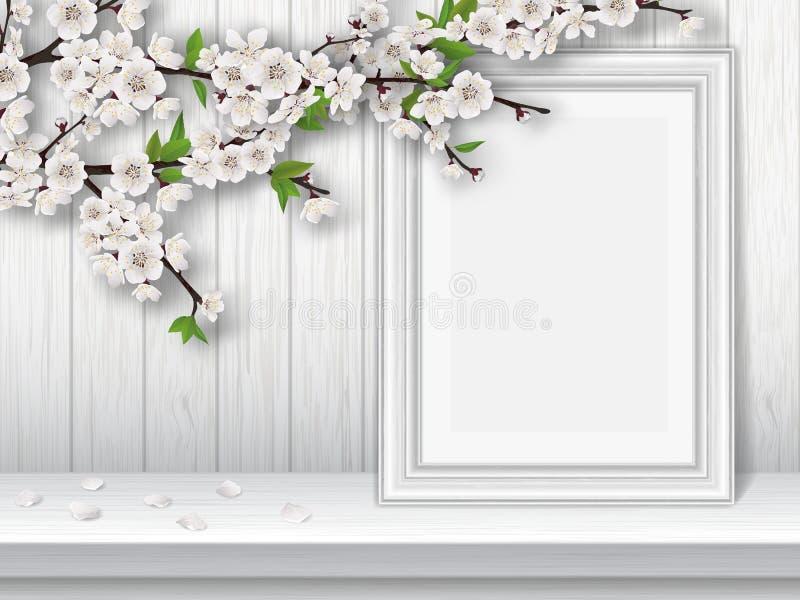 Ramo della ciliegia della primavera e struttura di fioritura della foto su una tavola bianca illustrazione di stock