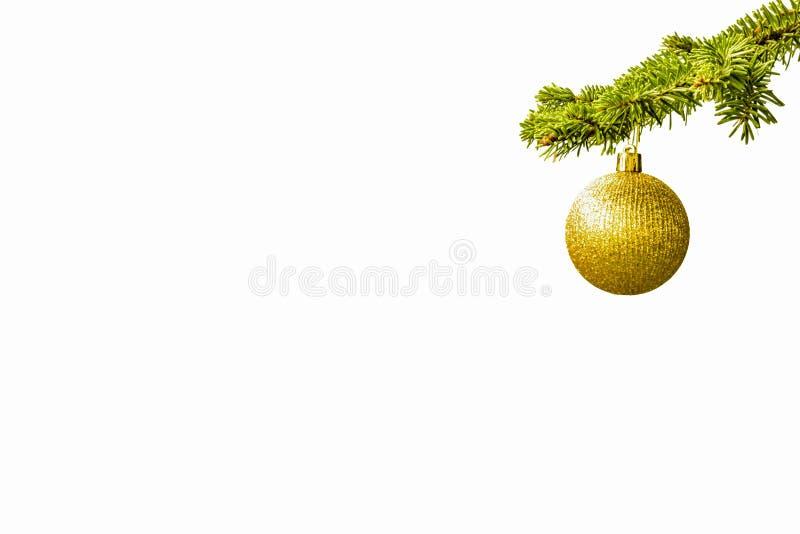 Ramo di albero dell'abete con una palla dorata di scintillio su fondo bianco christmastime Cartolina di natale fotografia stock libera da diritti
