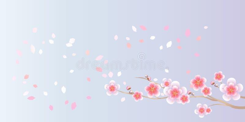 Ramo di volata dei petali e di Sakura isolata su fondo porpora blu-chiaro fiori dell'Apple-albero Cherry Blossom Vettore ENV 10 royalty illustrazione gratis