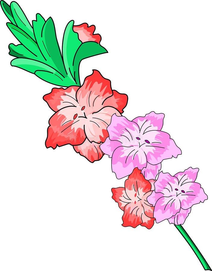Ramo do tipo de flor da flor imagem de stock royalty free