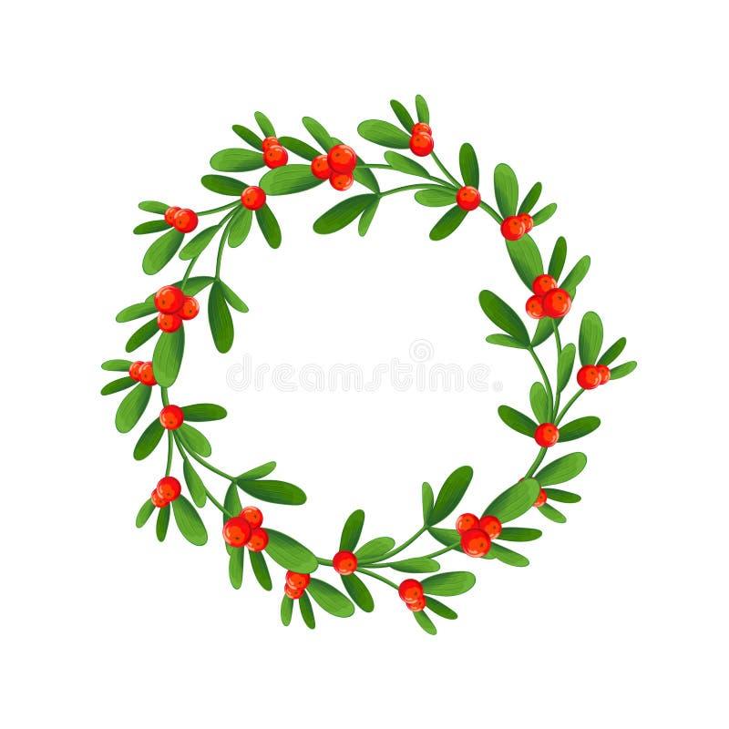 Ramo do visco com bagas e curva vermelha Um ramalhete do Natal foto de stock royalty free