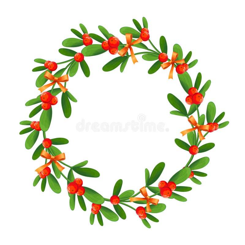 Ramo do visco com bagas e curva vermelha Um ramalhete do Natal foto de stock