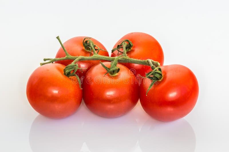 Download Ramo Dos Tomates Em Um Fundo Branco Foto de Stock - Imagem de cereja, fundo: 65580498