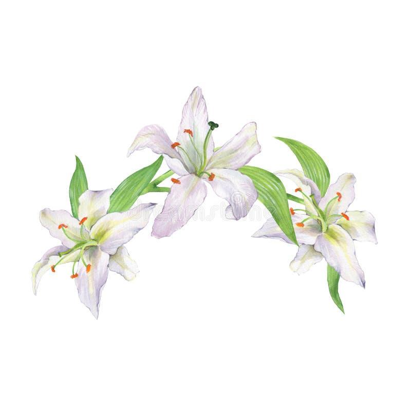 Ramo floral da aquarela com lírios 1 ilustração royalty free